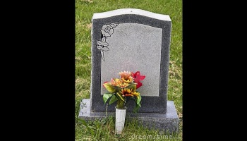 "Free Fundraiser Photo for ""HEADSTONE FOR NATASHA & JAMES"""