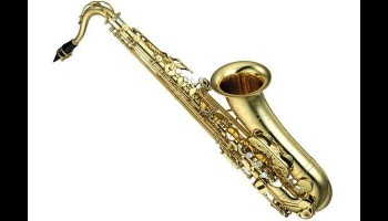 "Free Fundraiser Photo for ""Wish to get a Saxophone"""